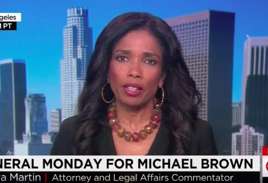 "Legal Correspondent Areva Martin, Michael Brown case legal analysis on ""CNN Newsroom"""