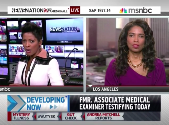 "Legal analyst Areva Martin talks Michael Dunn Trial on MSNBC's ""Tamron Hall"""