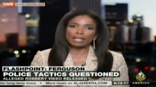 Legal Correspondent Areva Martin – Al Jazeera – Michael Brown Case