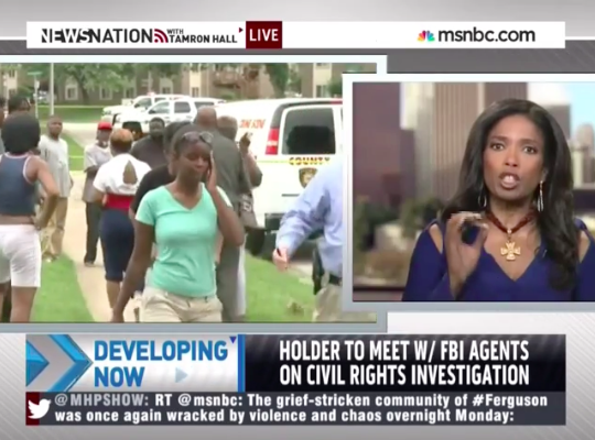 Legal Correspondent Areva Martin Talks Michael Brown murder on MSNBC with Tamron Hall