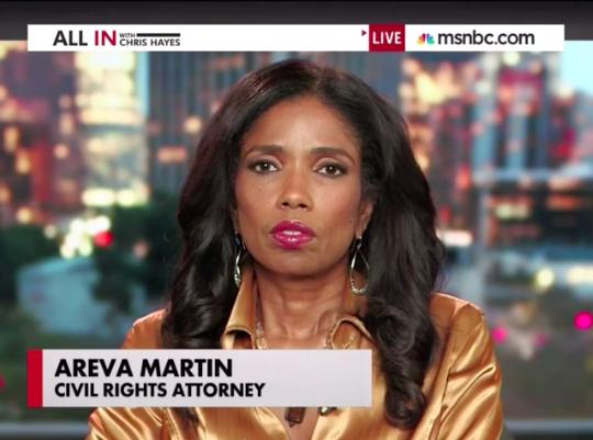 "Legal Correspondent Areva Martin • Ferguson legal analysis on MSNBC's ""All in With Chris Hayes"""